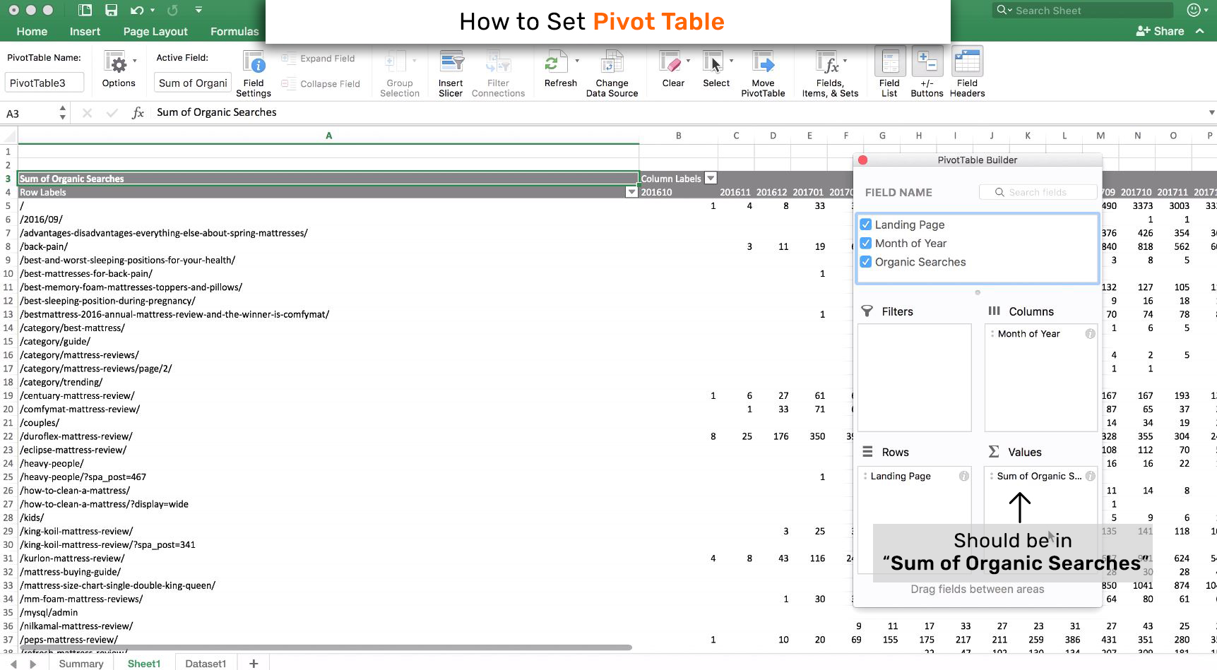 Creating Pivot Table
